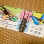 「世界の昆虫展」へ