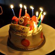 コムギ、9歳の誕生日